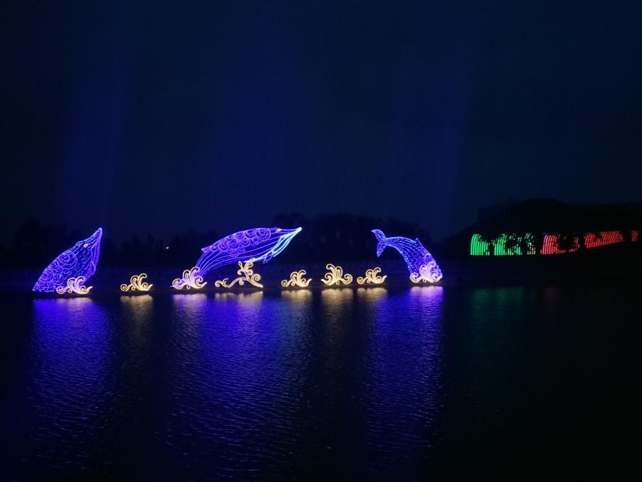 灯光节彩灯夜间水面倒影效果